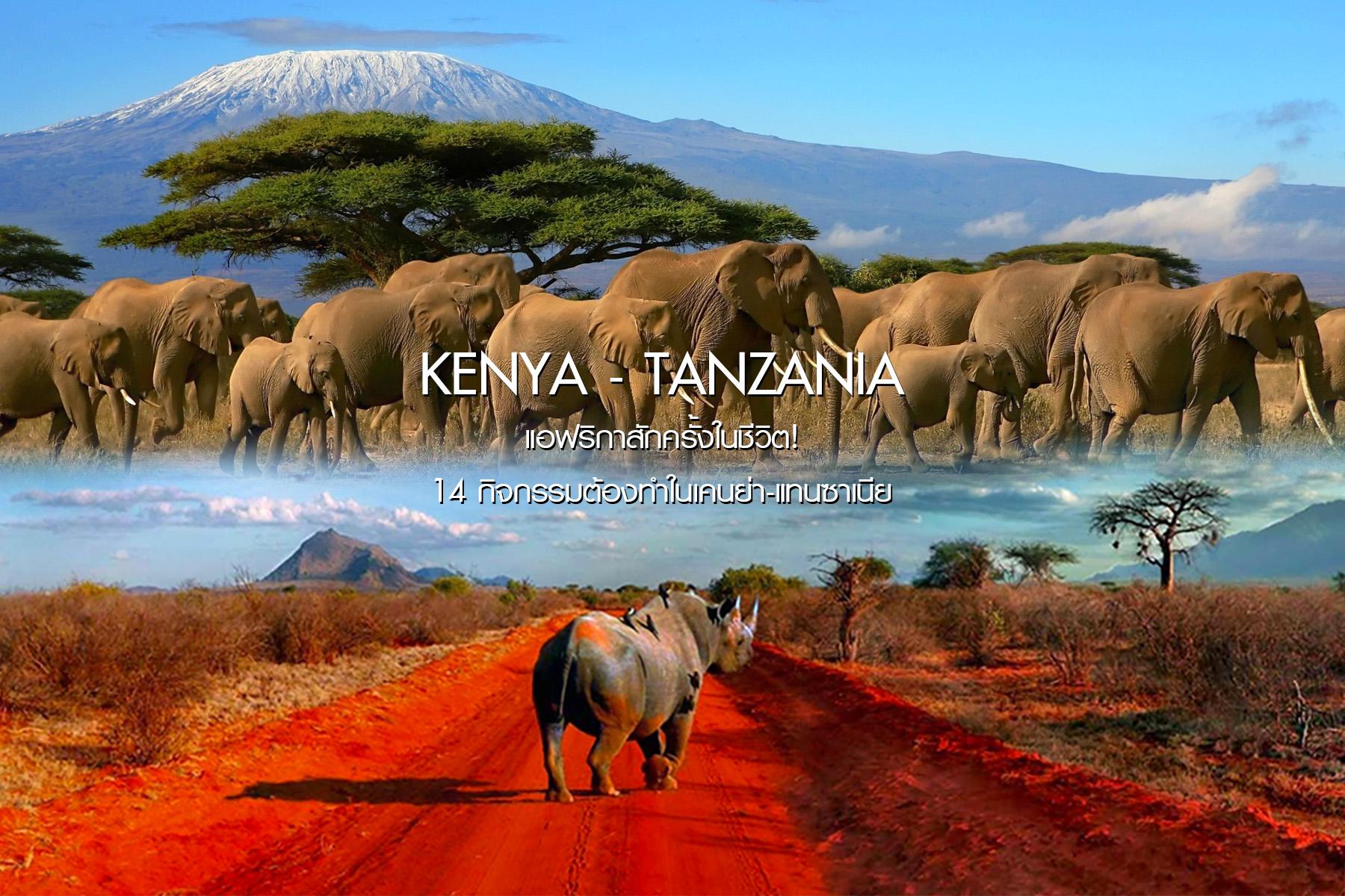 แอฟริกาสักครั้งในชีวิต! 14 กิจกรรมต้องทำ ในเคนย่า-แทนซาเนีย